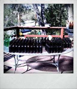 A table full of beer bottles organized and lined up based on bottle type.